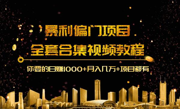 暴利网络项目全套合集视频教程:你要的日赚1000 月入几万 项目都有