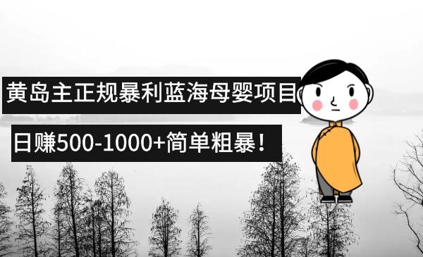 黄岛主正规暴利蓝海母婴项目,日赚500-1000 简单粗暴!