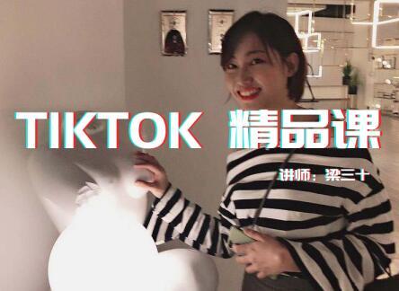 Tiktok精品实操课,单账号最高成绩210w粉丝,单条视频最高300w点赞