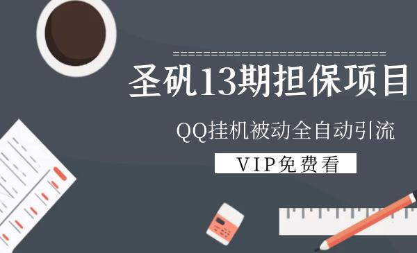 圣矾13期担保项目:QQ挂机被动全自动引流